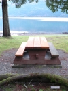 Cultus_lake_picnic_table_mossy_branch